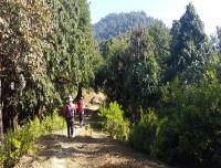 Mardi Route