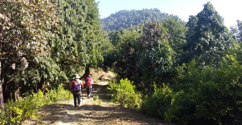 Trekking in Mardi Himal Route, Hiking in Mardi Himal route.