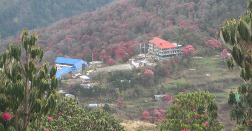Poon Hill Trek during the spring season.