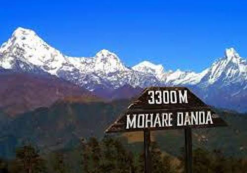 Mohare Danda Trek